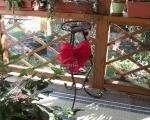 Stojan na kvety Ruža